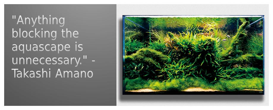 Miyabi Aqua Design Nature Aquariums And Aquascapes